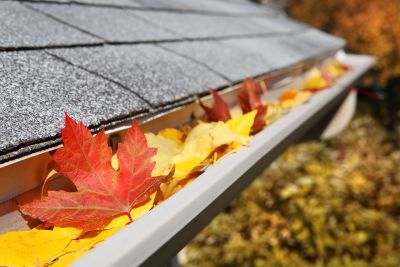 Fall Home Considerations to Make Before Winter