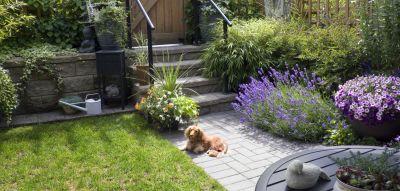The Art of a Small Garden