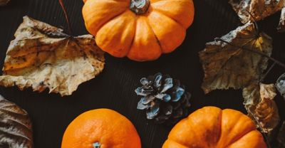 Fall Staging: Add Some Pumpkin Spice to Your Decor