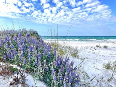 Where are the Beaches of the Emerald Coast?