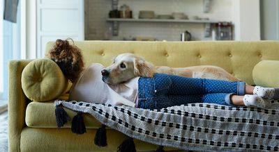 Why Pet Friendly Homes are in High Demand