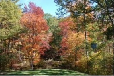 Fall in NH – Halloween and Apple picking time!