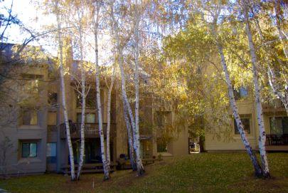 Updated Indian Springs Condo in Elkhorn