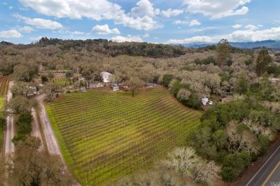 4.45 Vineyard Property