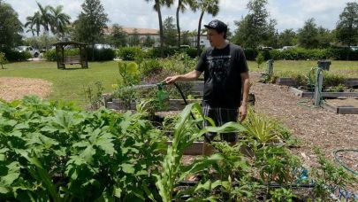 Organic growers find oasis at Boca community garden