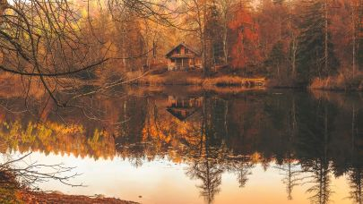 5 Reasons to Buy or Sell in the Fall