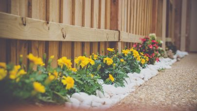 Low-Cost DIY Curb Appeal Projects