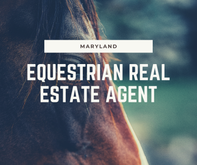 Equestrian Real Estate Agent In Maryland