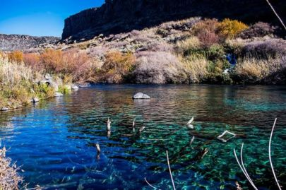 Top 10 Spring Activities in Twin Falls Idaho