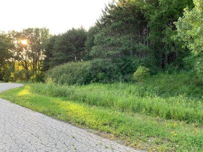7636 Iris Lane – Vacant Land