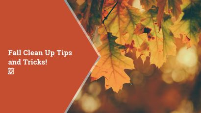 Fall Cleanup Tips and Tricks