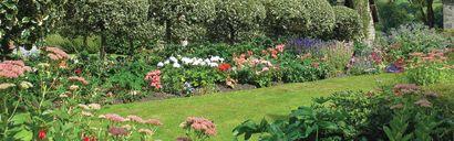 Renovating Your Landscape for Better Home Value