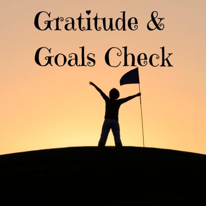 Gratitude & Goals Check