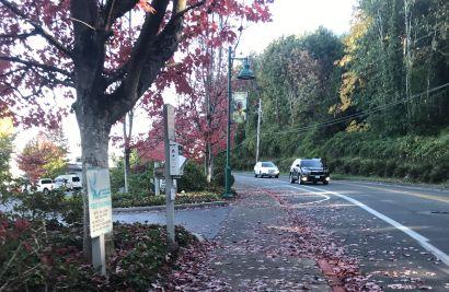 Autumn Sip 'n Stroll