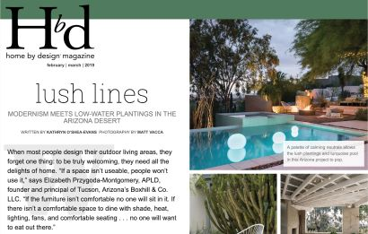 Lush Lines: Modernism Meets Low Water Plantings in the Arizona Desert
