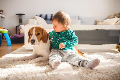 CHILD & PET-PROOFING YOUR HOME