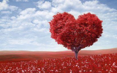 8 Unique Valentine's Day Experiences Around Louisville!