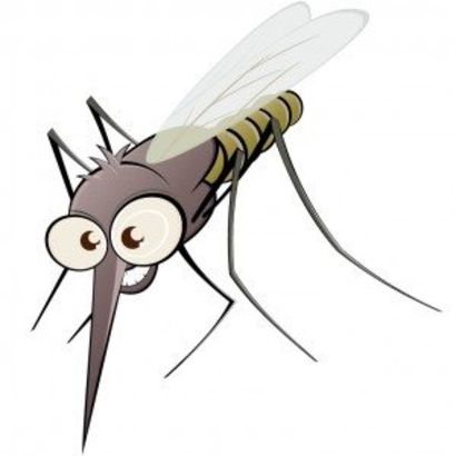 MOSQUITOS ARE HERE IN ARIZONA!