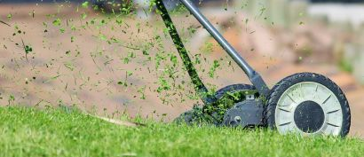 Protecting Your Lawn in Summer Heat