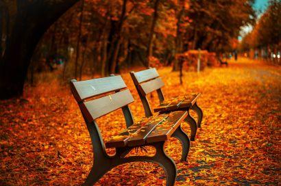 Prep Your NoVA Home for Fall