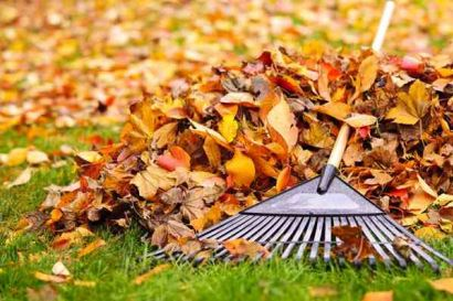 Super Easy Fall Maintenance