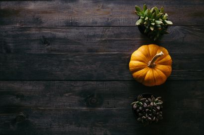 6 Autumn Decor Tips for Sellers