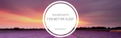 Houseplants for Better Sleep