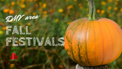 DMV Area Fall Festivals