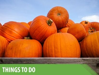 October Happenings Around Snohomish County