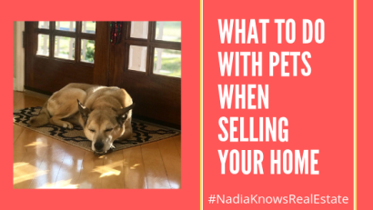 What To Do with Your Pets When Selling Your Home