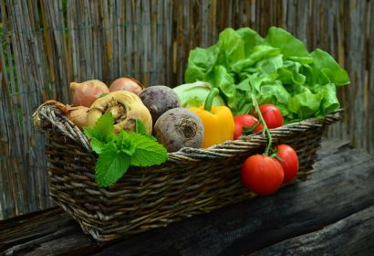 5 Steps to Starting Your Own Garden