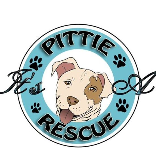 Donation Story: It's A Pittie Rescue