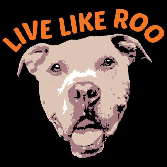 Donation Story: Live Like Roo Foundation