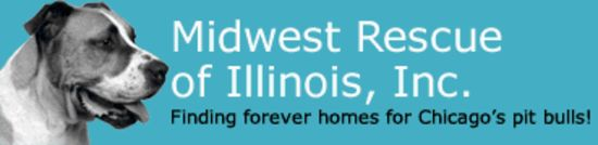Donation Story: Midwest Rescue of Illinois