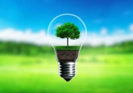 Tips and Tricks to 'Go Green' in Your Home