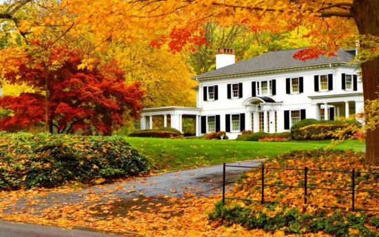 """""""Fall"""" In Love With a New Home: Tips for Buying a Home in Autumn"""