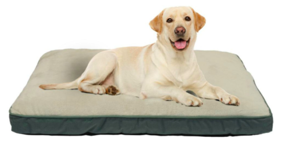 Large Dog Bed Under $15!