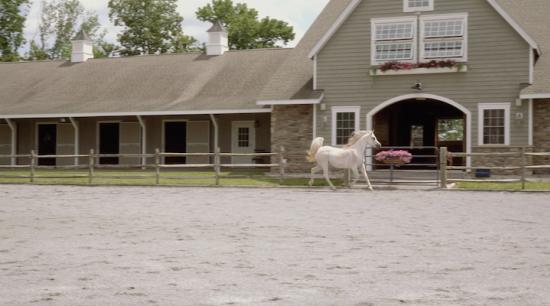 Thornewood Farm | Stockton, New Jersey