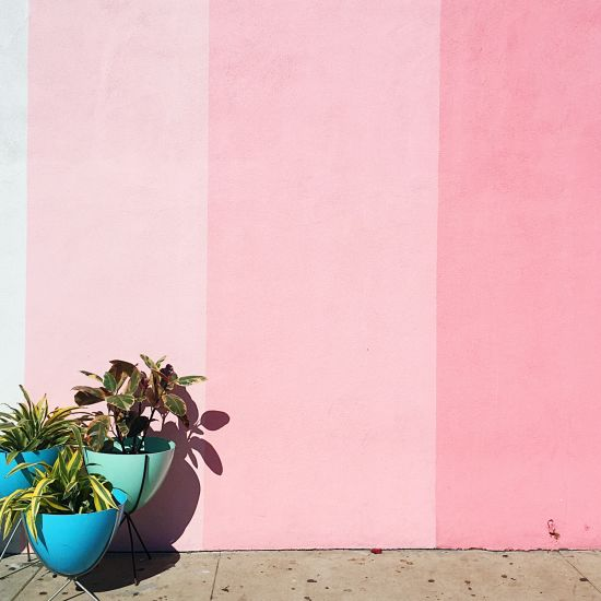 The San Diego Pink Hotspots You Need to Check Out