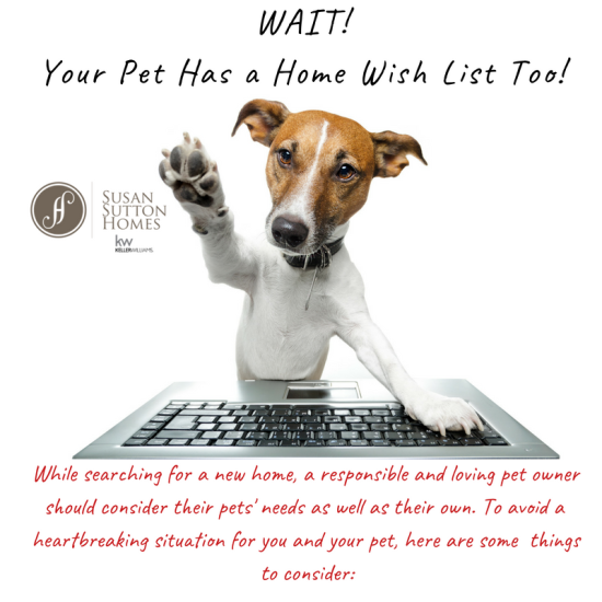 Pet Friendly Home Search Tips