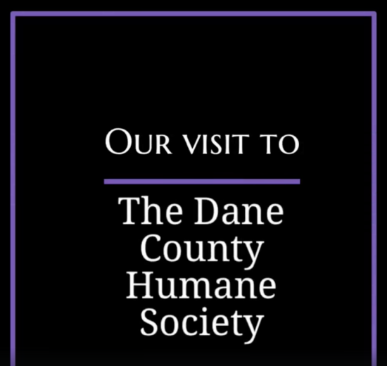 The Dane County Humane Society