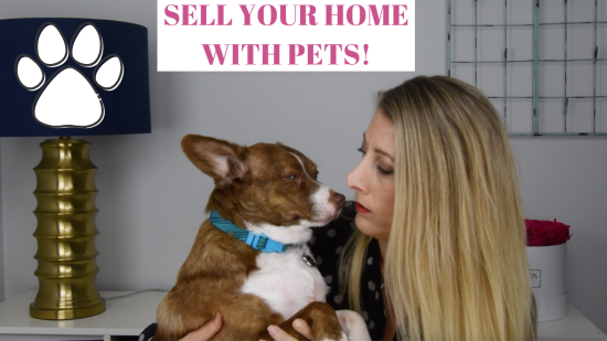 How to Sell a House with Pets at Home❤️