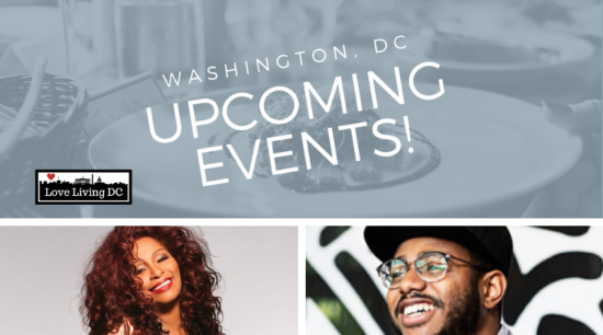 Top 15 Things To Do in Washington, DC This Weekend: November 15 – 17