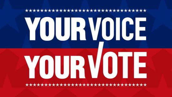 Vote On Texas Constitutional Amendments