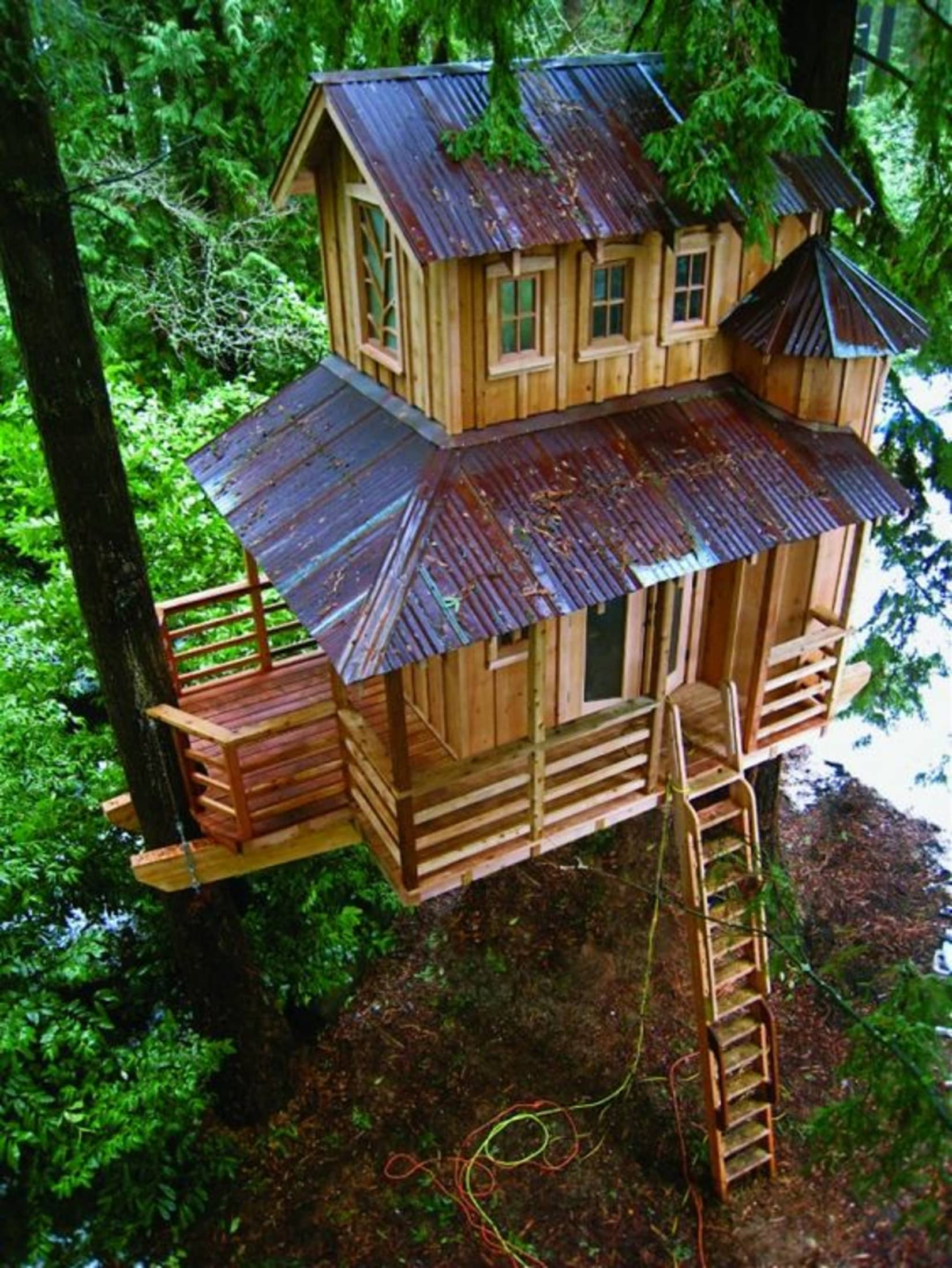 Extreme Treehouses, Not Just For Kids