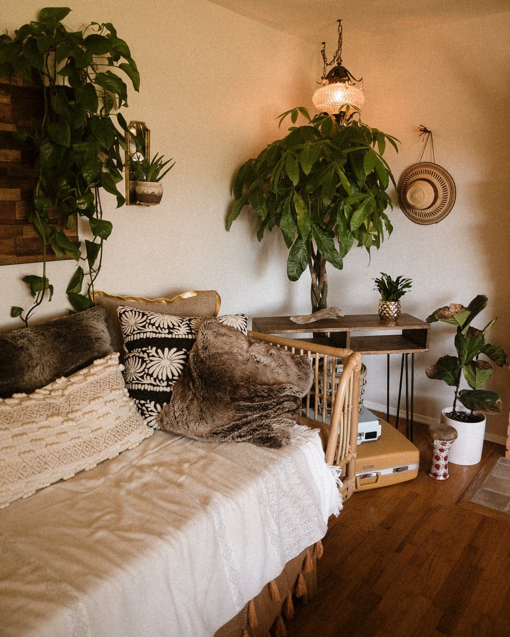 Image result for dorm room plant interior design