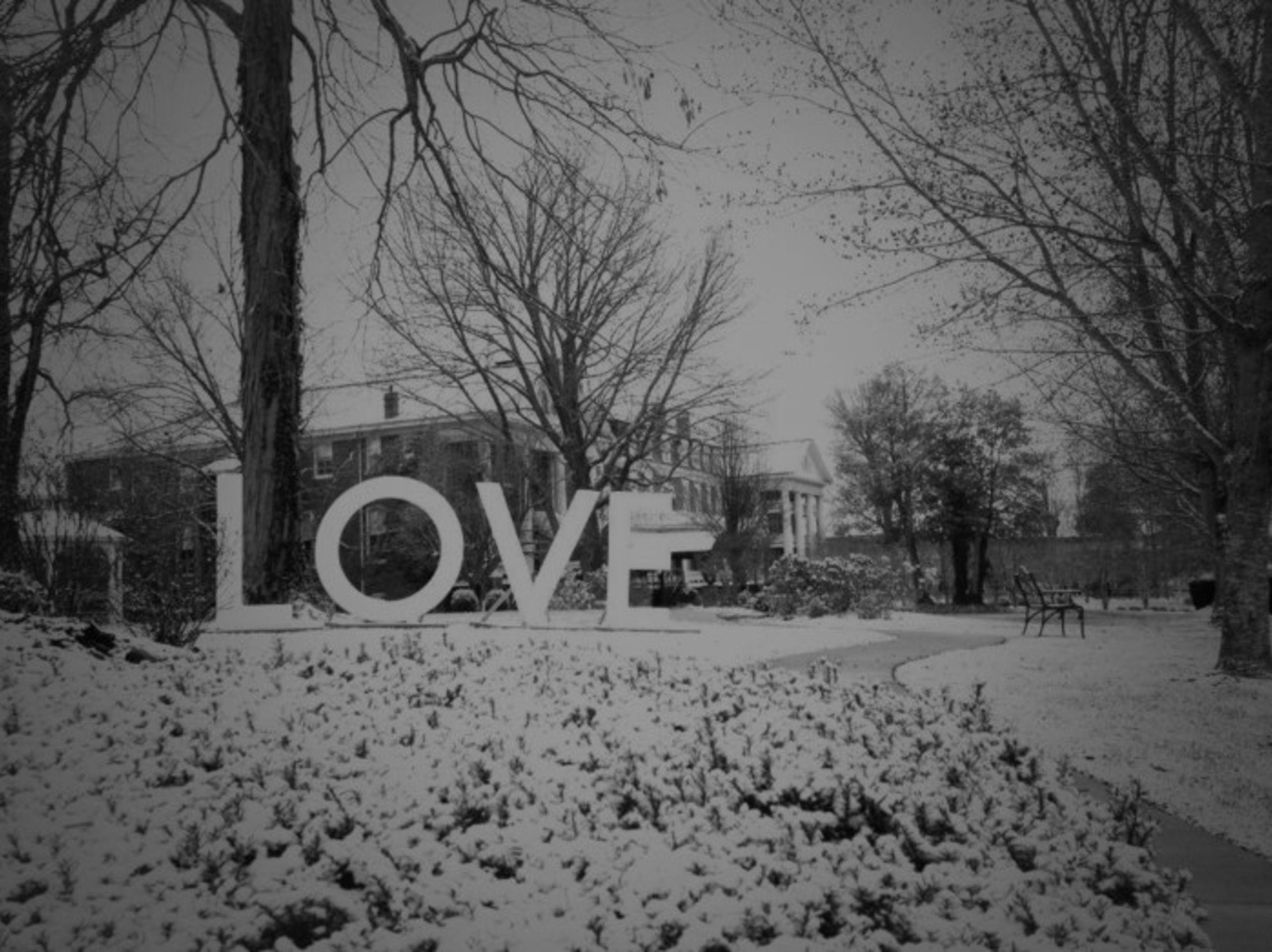 Plan a Winter Staycation in Abingdon